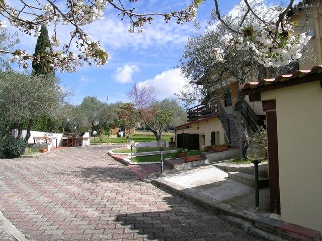 oasis mobiliario jardim:lucinhadettori